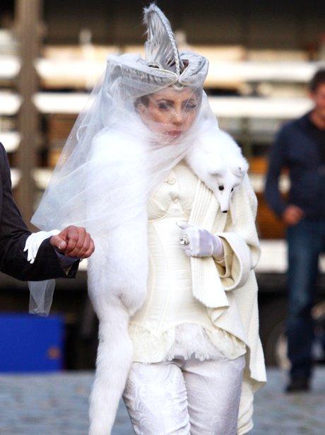 Lady Gaga wearing a fox fur scarf