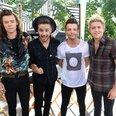 Harry Styles, Liam Payne, Louis Tomlinson and Nia